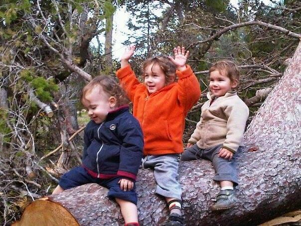ילדים משחקים ביער